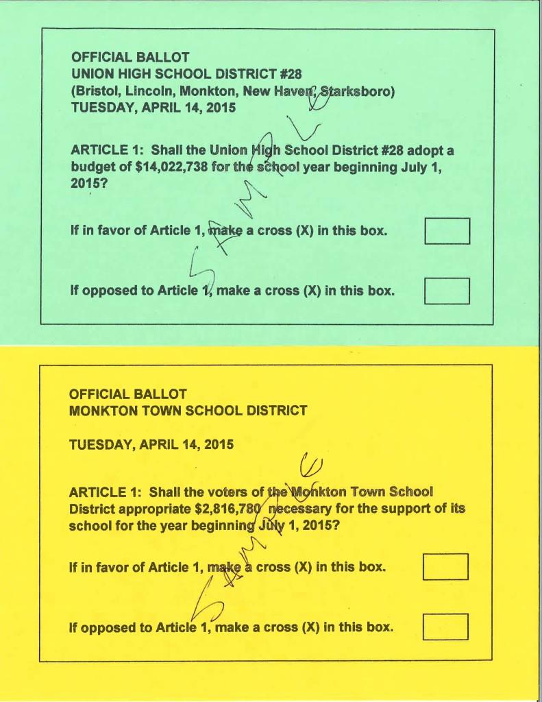 2015 revote ballots